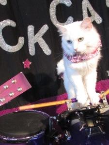 Astro-Cat Drums