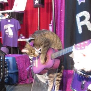 Astro-Cat Guitar